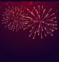 Beautiful fireworks display vector