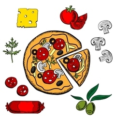 Sliced italian pizza with ingredients vector