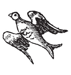 Bird volant is used in heraldry to express the vector