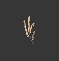 Rice plant flat icon vector