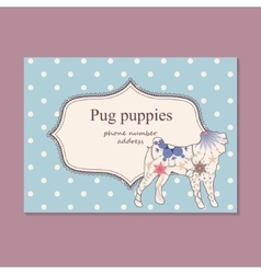 Vintage business card pug puppies vector