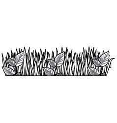 Monochrome contour of field grass and plants vector