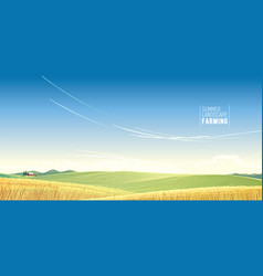 Rural landscape with wheat and house is created vector