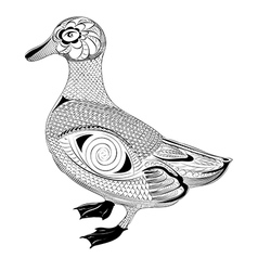 Zentangle stylized duck vector