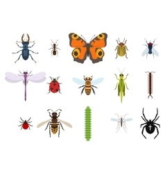 Insects and bugs pests and midge set of icons vector
