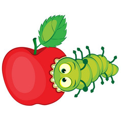cartoon caterpillar gnaws apple vector image