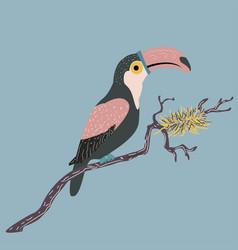 cute hand drawn toucan bird vector image