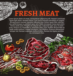 fresh meat chalkboard poster butcher shop design vector image