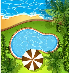 Ocean scene and swimming pool vector image vector image