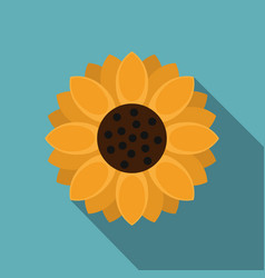 orange gerbera flower icon flat style vector image