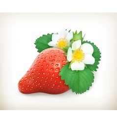 Strawberry with leaves and flowers vector image vector image
