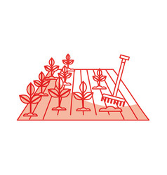 Cultivated plant isolated icon vector