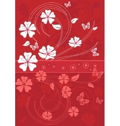 Sakura blossom red background vector