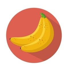 banana icon healthy fruit design vector image