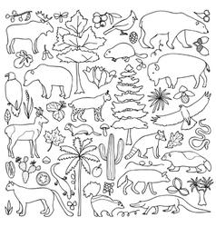 Hand drawn North America set vector image