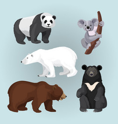 Set of standing sitting and creeping bears vector