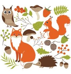 Woodland Animals Set vector image