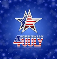 American Independence day star vector image vector image