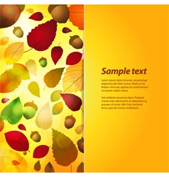 autumn panel background with sample text vector image vector image