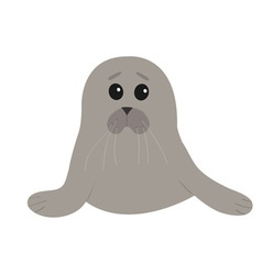 Cute seal pup baby harp cartoon character white vector