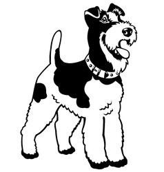 fox terrier black white vector image