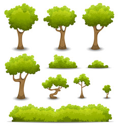 Forest trees hedges and bush set vector