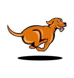 dog running vector image vector image