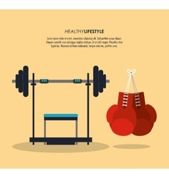 Weight and boxing gloves icon fitness design vector