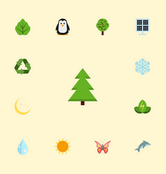 Flat icons night tree conservation and other vector