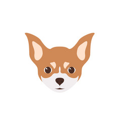 multicolor head of puppy chihuahua vector image vector image