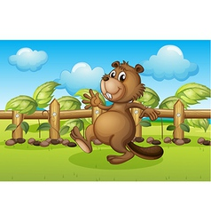 A beaver running inside a fence vector image
