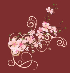 blossom cherry vector image vector image