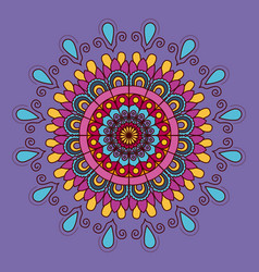 lilac background with colorful flower mandala vector image vector image