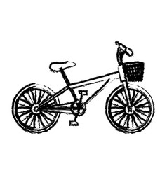 monochrome sketch of bike with basket in white vector image