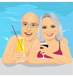 Lovely senior couple drinking red wine in pool vector