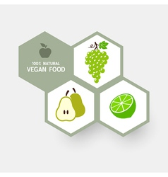 Vegan concept with fruit icons vector image