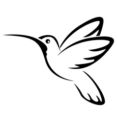 Tattoo hummingbird for you design vector image
