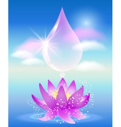 Water drop clouds and lilies vector
