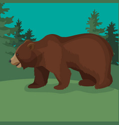 Large brown bear side view close-up walking in vector