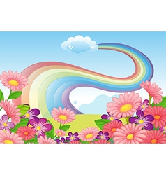 Flowers at the hilltop and a rainbow in the sky vector