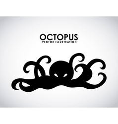 octopus design vector image