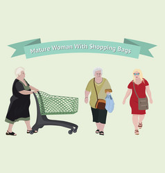 Older woman with shopping bags vector