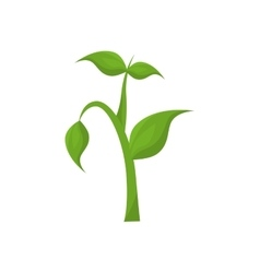 Plant tree growing stem icon graphic vector