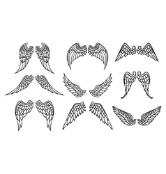 Wings set for tattoo vector