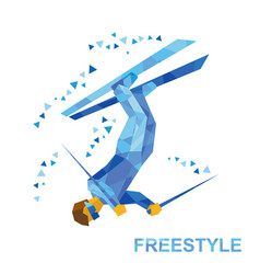 freestyle skiing superpipe or slopestyle vector image