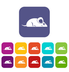 Pet mouse icons set flat vector