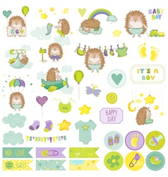 Baby Boy Hedgehog Scrapbook Set vector image