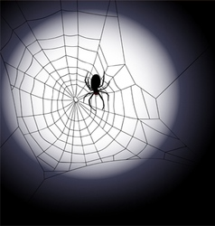 Halloween background - of spiders web vector image