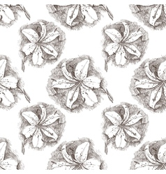 lily seamless vector image vector image