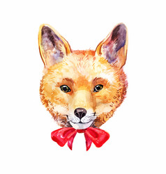Portrait of fox face or head with cute red bow vector